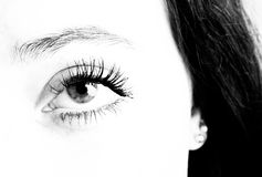 Eye close up fashion. Close up details of eye, eye lash ear and hair in high contrast black and while Royalty Free Stock Photo