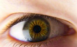 Eye. Close up of an iris of a human eye, gray-green color Stock Photo