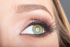 Eye close up makeup Stock Image