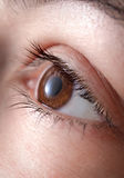 Eye close up. Makro image of an eye royalty free stock photography
