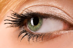 Eye closeup Royalty Free Stock Image