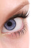 Eye closeup Royalty Free Stock Photography
