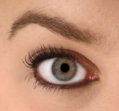 Eye closeup. The eye of a youthful female - clean and available for editing Stock Images