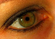 Eye closeup. Orange-green eye closeup Stock Photos