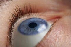 Eye closeup Royalty Free Stock Photography