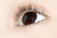 Eye closeup. From a young child with high detail stock image