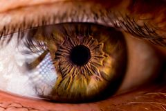 An eye closeup shot. A very clear eye taken with a closeup macro 1/1 lens royalty free stock photo