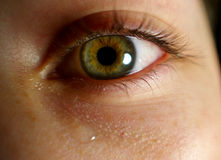 Eye closeup with tear. A close up of a crying eye royalty free stock photography