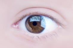 Eye. Closeup view of a brown eye Royalty Free Stock Image