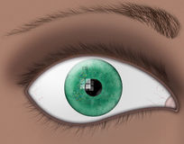 Eye Color DNA. A green eye reflects a strand of dna and genetic code Royalty Free Illustration