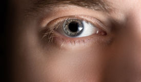 Eye with contact lens. Stock Images