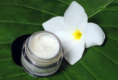 Eye cream and frangipani flower Stock Photography