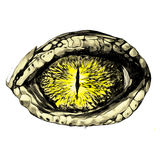 Eye of a crocodile. Or reptile closeup, sketch vector graphics color eye pattern yellow Stock Photography