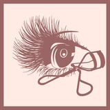 Eye and curler for lashes icon Stock Photos