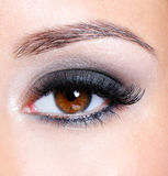 Eye with dark brown glamour make-up Royalty Free Stock Image