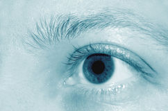 Eye detail Stock Images