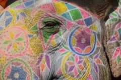 Eye of the elephant Stock Photo