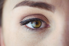 Eye with eyeliner and eyeshadow Stock Images