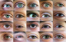 Eye, eyes - many eyes. 24 eyes from 24 different persons. Aligned into the 6x4 grid eye by eye stock image