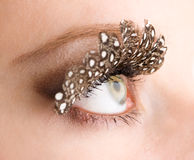 Eye and false eyelashes Royalty Free Stock Images