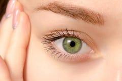 Eye female green macro. Medicine health background Stock Images