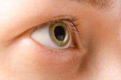 Eye female green natural macro Stock Photography