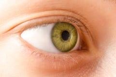 Eye female green natural macro Royalty Free Stock Images