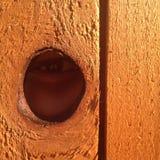 Eye through fence hole Stock Image