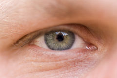 An eye-full. Extreme close-up of a hazel colored man's eye Royalty Free Stock Image