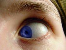Eye girato dentro fotografie stock libere da diritti