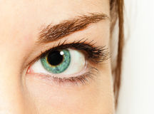 Eye of girl Royalty Free Stock Photos
