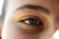 An eye of a girl with thick and dark eyebrow and long eyelash Royalty Free Stock Images