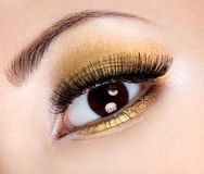 Eye glamour make-up Stock Image