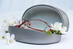 Eye glasses with cherry blosson flowers Royalty Free Stock Images