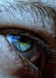 eye green Royaltyfria Bilder