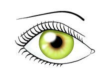 Eye green color royalty free stock image