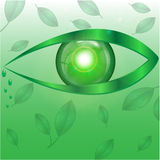 Eye of green color Stock Images