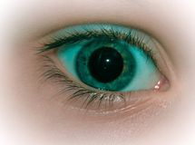 Eye. Green eye. Open pupil. stock image