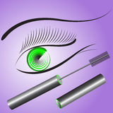 Eye with a green pupil and long black eyelashes. Stock Photo