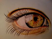 EYE hand draw. Hand draw color pencils EYE Royalty Free Stock Photography