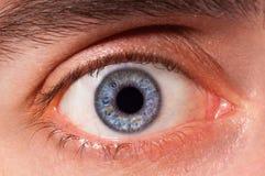 Eye. Horizontal macro image of an blue human eye. Details of iris, pupil and eyelashes are visible Stock Image