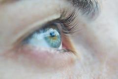 Eye, Human, Macro, Beauty, Portrait Royalty Free Stock Photography