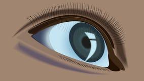 eye humanen Arkivfoto