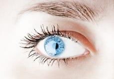 eye humanen Fotografering för Bildbyråer