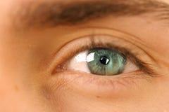eye I Royaltyfri Bild