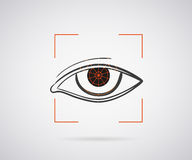 Eye identification Stock Image