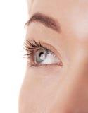 Eye il primo piano di bella giovane donna isolato su bianco Fotografie Stock Libere da Diritti
