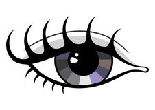 Eye illustration Royalty Free Stock Photography