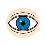 Eye illustration. Blue eye on light skin illustration Royalty Free Stock Photos