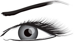Eye Illustration In Black And White Stock Photography